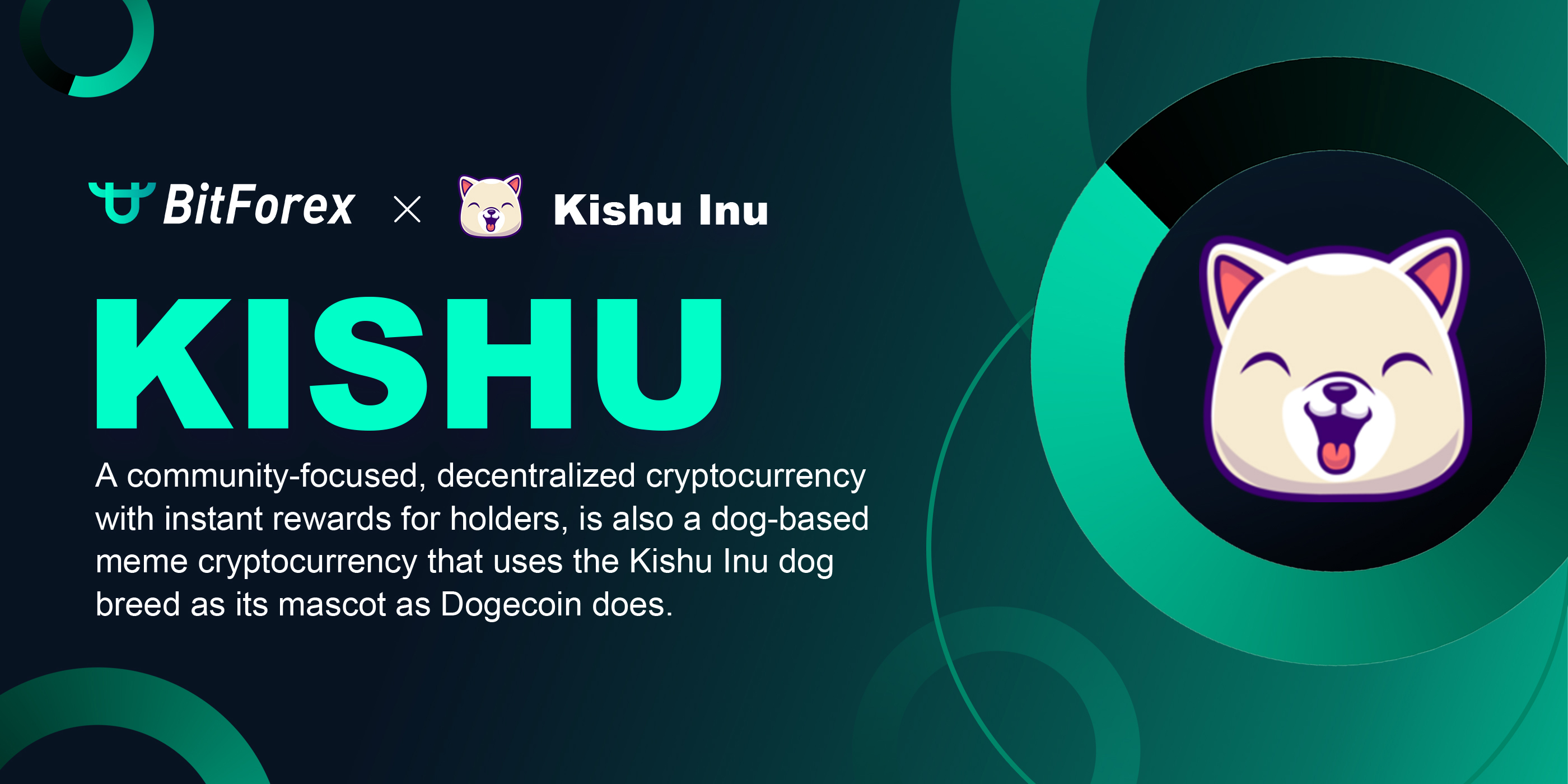 Brief ihtroduction to Kishu Inu Coin